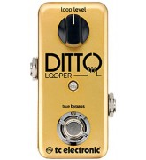 Ditto Looper Gold